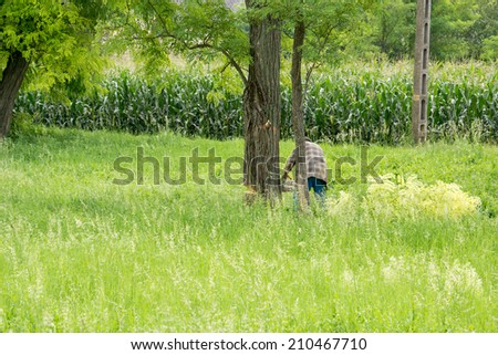 A woodcutter at work in the forest. - stock photo