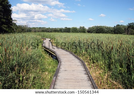 A wooden boardwalk, which is part of the Appalachian Trail, traverses wetlands in Vernon, New Jersey - stock photo