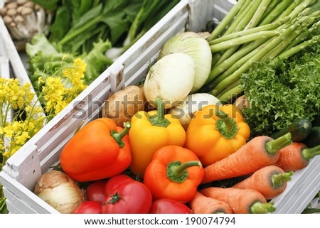 A wooden box filled with different fresh vegetables. - stock photo