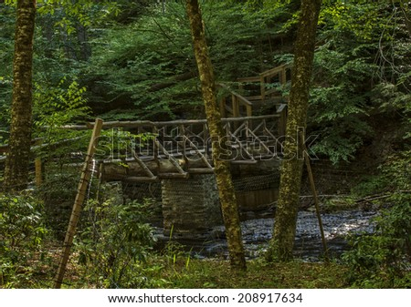 A wooden bridge made of logs over a stream in the lush woods of Pennsylvania, George W. Childs State Park. - stock photo