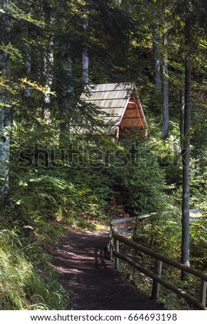 A wooden gazebo in the forest near the path. Wooden building in a forest. Fenced path in the forest.