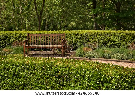 A wooden park bench surrounded by tree, bushes and various greenery.