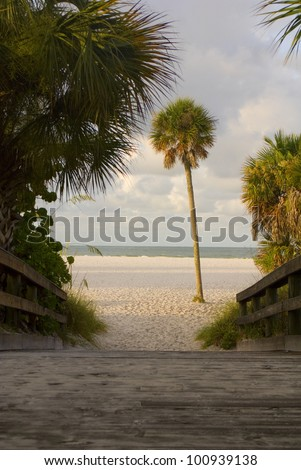 A wooden path to a sunny empty beach framed by palms - stock photo