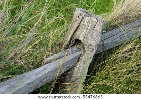 A wooden rail fence in grassy background