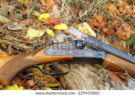 A wooden retro shotgun in autumn style - stock photo
