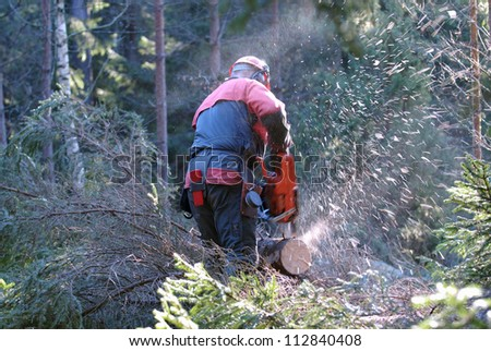 A woodman working in the forest, Sweden. - stock photo