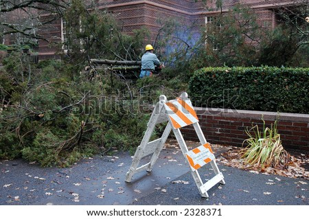 A worker cleans up a fallen tree on the University of Oregon campus resulting from a Dec. 14 storm that blew across the Pacific Northwest
