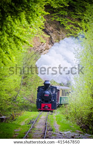 A working steam locomotive going on railway trough pine forest between mountains.