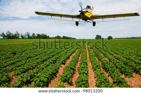 A yellow crop duster spraying a potato field