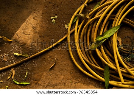 A yellow garden hose, soil background - stock photo