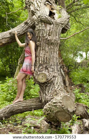 A young attractive girl posing on a tree in a forest wearing a summer dress on a sunny day.