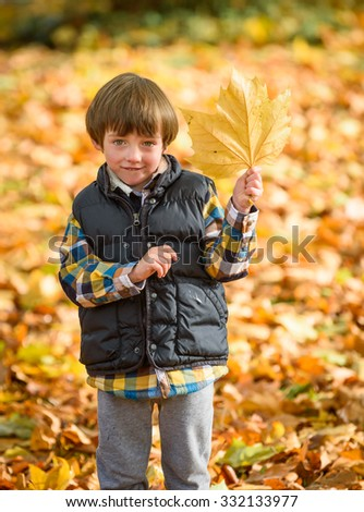 A young boy holding up an autumn leaf on a beautiful sunny autumn day
