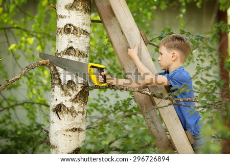 A young boy in a blue T-shirt standing on the step ladder and chopping a branch off the tree on a sunny summer day. Kids in the country. Little helpers.