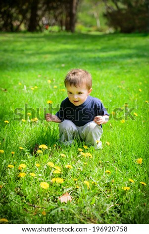 A young boy sits in a field holding a dandelion flower.   - stock photo