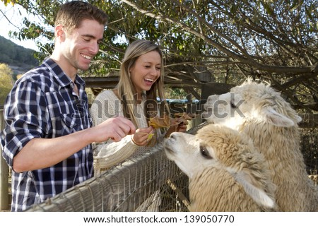 A young couple on a date at a petting zoo. - stock photo