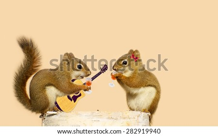 A young male squirrel holding an acoustic guitar while sipping liqueur with his sweetheart. - stock photo