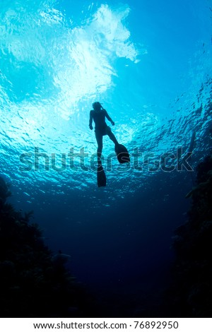 A young woman ascends from a free dive - stock photo