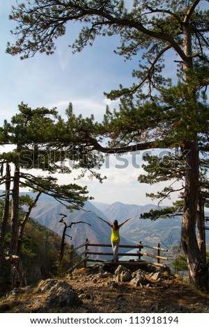 A young woman is standing at the top of the rock with her hands up.Tara Mountain, Serbia - stock photo