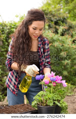 a young woman spraying pesticide on her flowers - stock photo