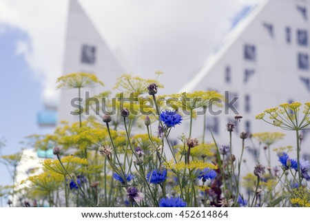 AARHUS, DENMARK - JULY 13, 2016: New modern architecture on Aarhus harbor. The buildings called The Iceberg. View from City Garden through flowers. July 13, 2016. - stock photo