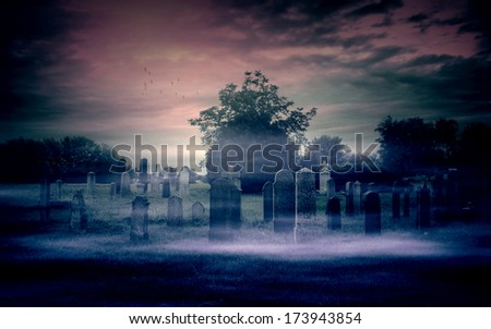 Abandoned cemetery  - stock photo