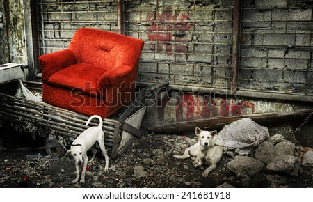 Abandoned couch in Manila. - stock photo