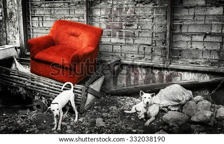 Abandoned Couch in Manila Old Modern Concept - stock photo
