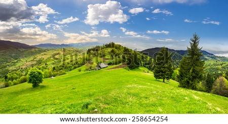 abandoned farm field with ruined barn in mountains near coniferous forest in morning light - stock photo