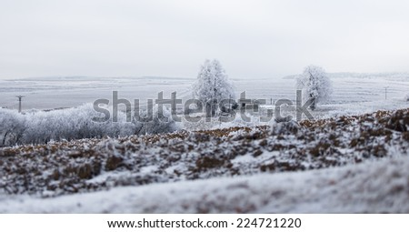 abandoned farmhouse in a remote area in winter - stock photo