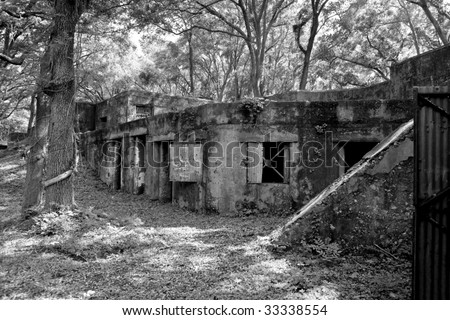 abandoned fort in the forest, fort fredrick, sc