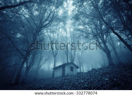 Abandoned haunted house in the magic forest. - stock photo