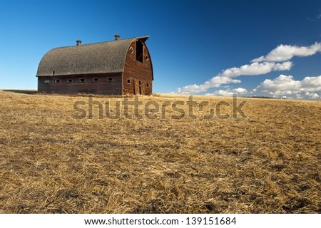 Abandoned house in dry grass with leafless trees behind - stock photo