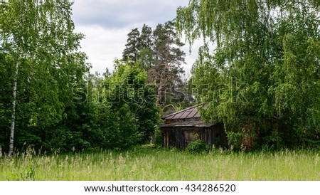 Abandoned house in the forest in summer. - stock photo