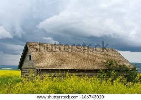 Abandoned log barn in a canola field with a thunderstorm in the  background - stock photo