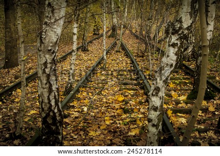 abandoned overgrown railroad tracks with leaves and trees - stock photo