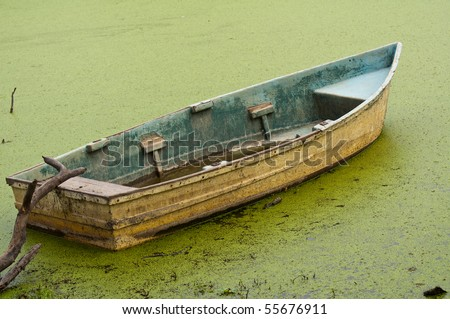abandoned rowing boat floating on algae in swamp land