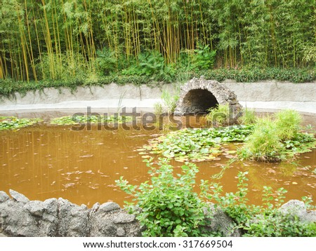 Abandoned wild pond with mud - stock photo