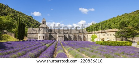 Abbey of Senanque and blooming rows lavender flowers. Panoramic view. - stock photo