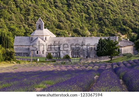 Abbey Senanque, famous place in Provence - France