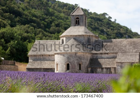 Abbey Senanque, famous place in Provence - France - stock photo