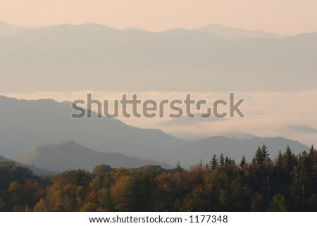 Above the clouds on an autumn sunrise - Smoky Mountains Nat. Park, USA.