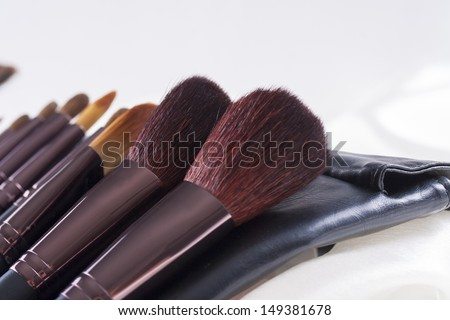 Absolutely woman's must-have an make-up brushes set - different sizes and shapes