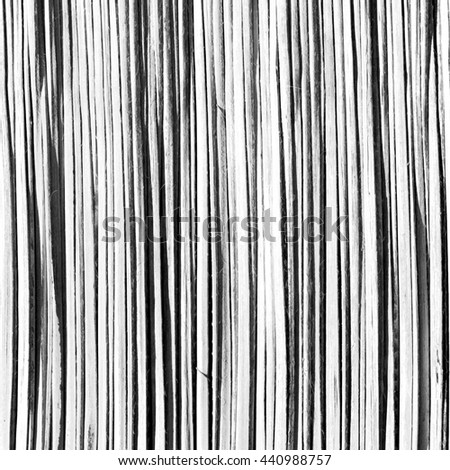 abstrac texture of a bamboo wall background in oman