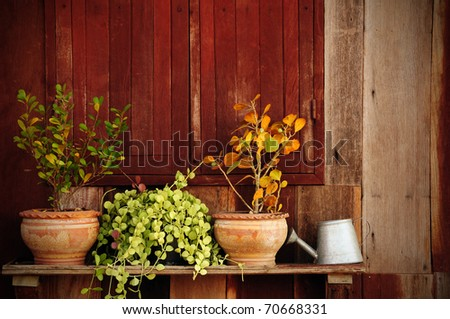 Abstract art old style window with flower. - stock photo