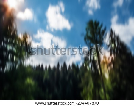 abstract artistic vertical motion blurred tree trunks, wall art