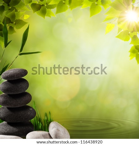 Abstract asian backgrounds with stone and bamboo leaves - stock photo
