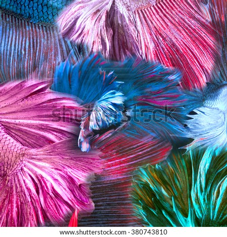 Fish abstract stock images royalty free images vectors for Thin line tattoo artists near me