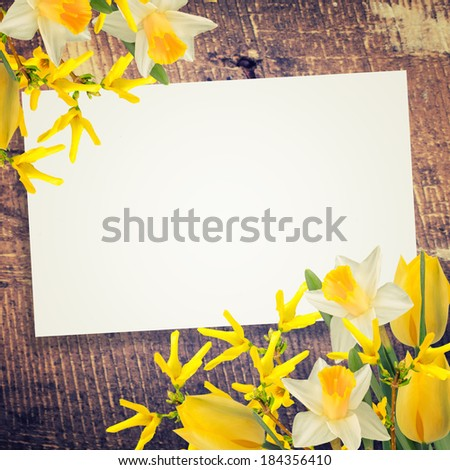 Abstract background for design. Flowers background. - stock photo