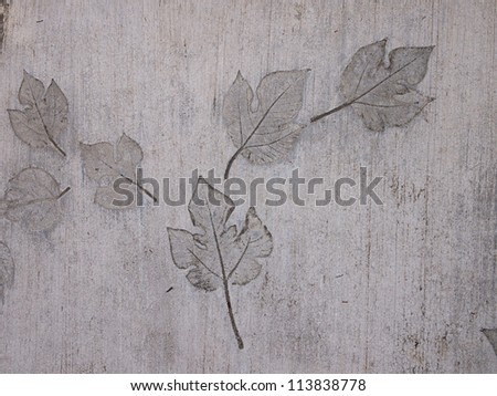 Abstract background from fallen leaves - stock photo