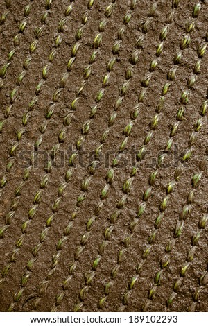 abstract background from plastic rope knit cloth